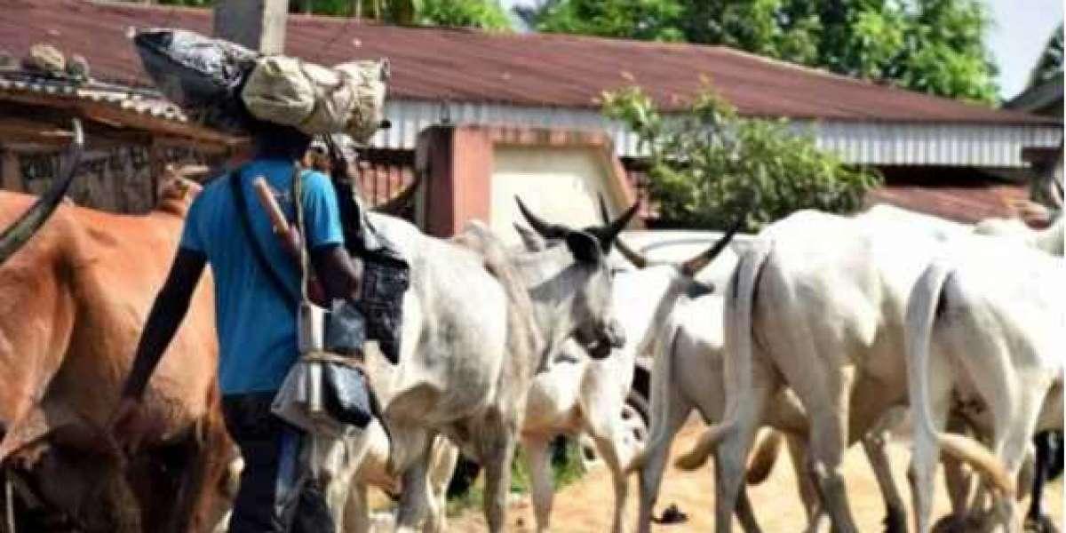 Suspected herdsmen invade Delta community
