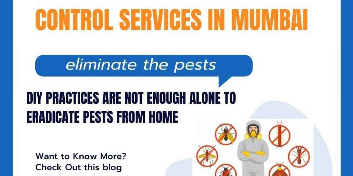 3 Tips for selecting pest control services in Mumbai